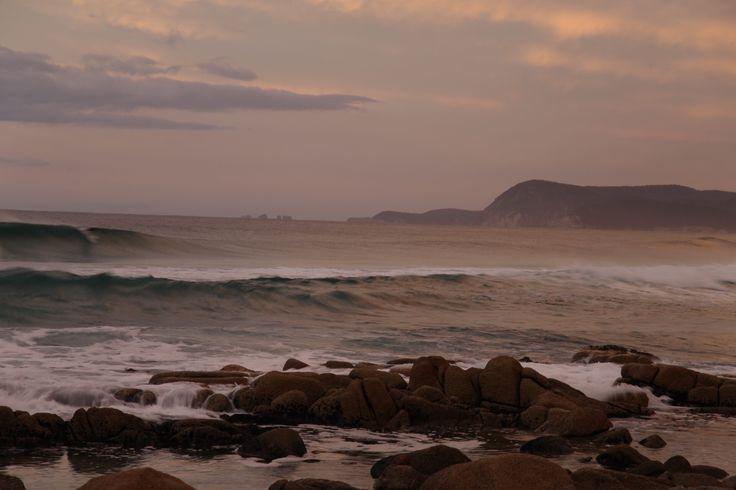 Surfer, sunrise at Freycinet Peninsula, Tasmania