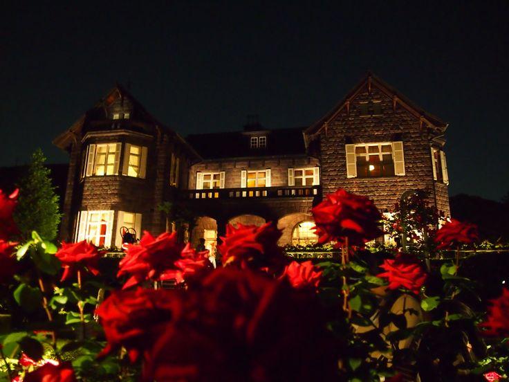 Rose garden light-up.