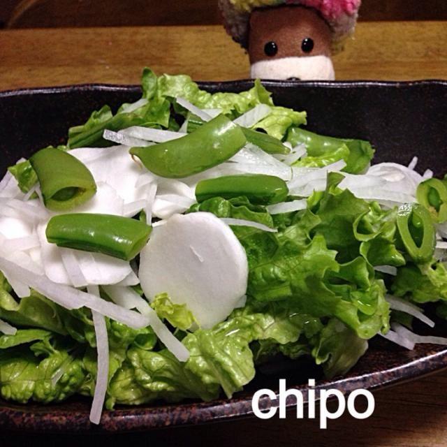 野菜室一掃サラダ - 12件のもぐもぐ - グリーンサラダ by toshitsumi191