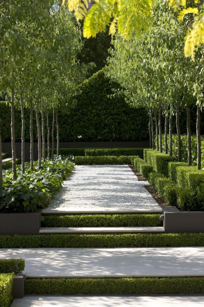 250 best Garden Trees images on Pinterest Landscape design