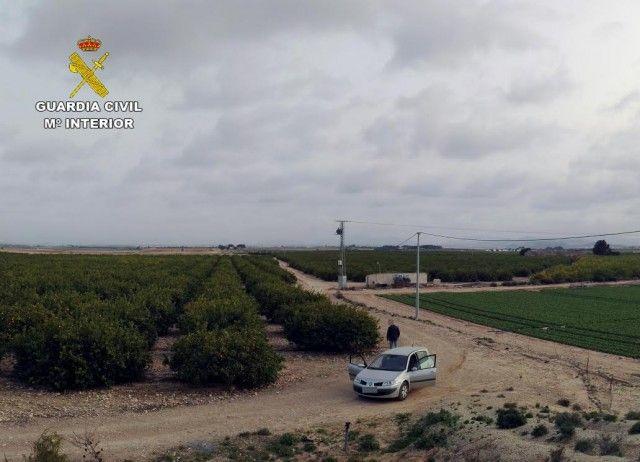 Desmantelado un grupo que sustrajo alcachofas y limones valorados en 13.000 euros en Fuente Álamo