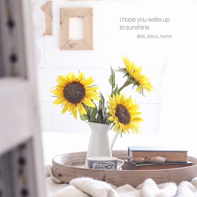 We wish you a morning full of sunshine and happiness ☀️🌻 . Photo credit: lovegrowswild  #home #allabouthome #homesnap #homeinspo #homeidea #homeinterior #homedecor #homestyling #sharemystyle #bedroom #flowers #melbourne #quote #quotes #scandistyle #scandihome #cherishhomeliving  #homier #morning #wewishyousunshine