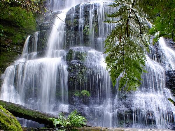 Henderson Falls Great Otway National Park, Victoria
