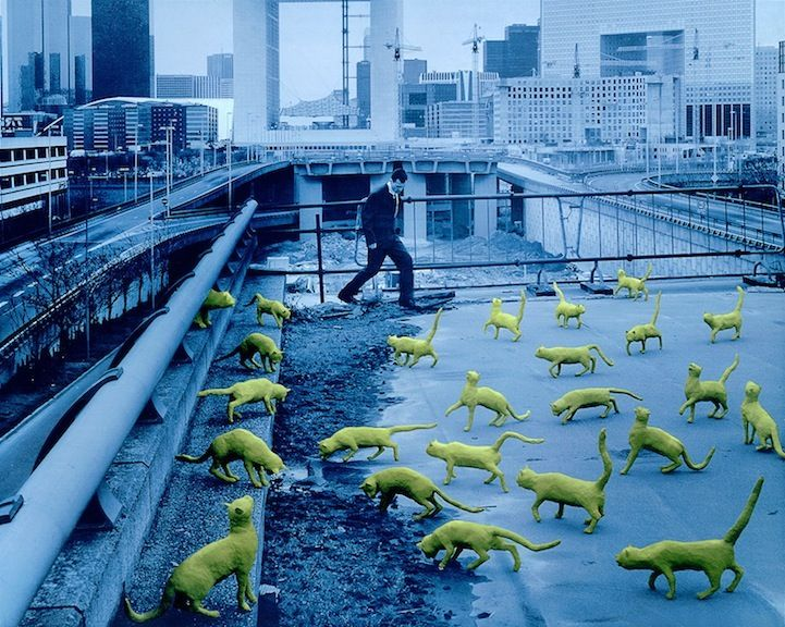 Decades before Photoshop was available, American artist Sandy Skoglund started creating surrealist images by building incredibly elaborate sets, a process which took months to complete. Her works are characterized by an overwhelming amount of one object and either bright, contrasting colors or a monochromatic color scheme.