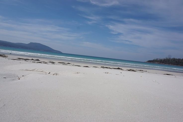 Maria Island Walk, one of the pristine, white sand and clear water beaches you will visit and swim in.
