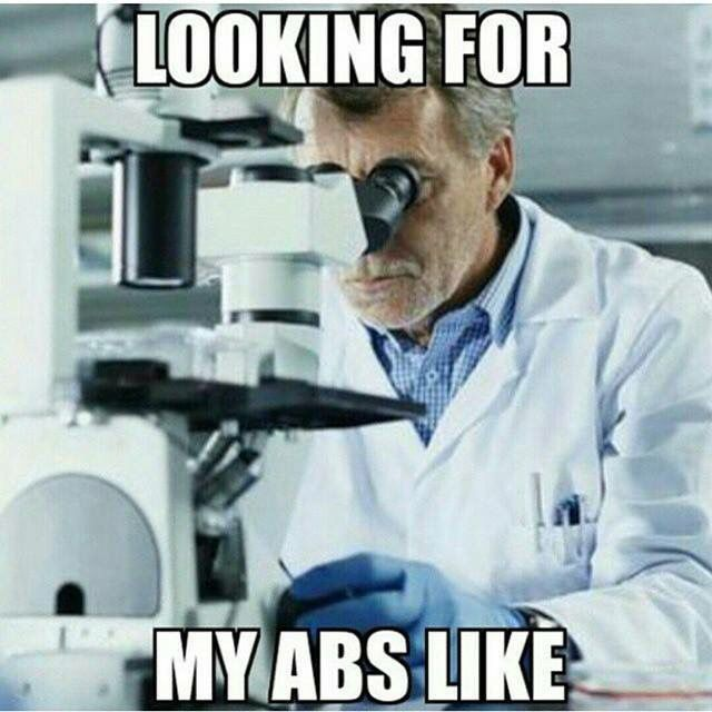 3e4e08cc177b524f5266977a01eba25d funny gym humor funny humor quotes 284 best funny gym images on pinterest funny gym, fitness,Funny Ab Memes