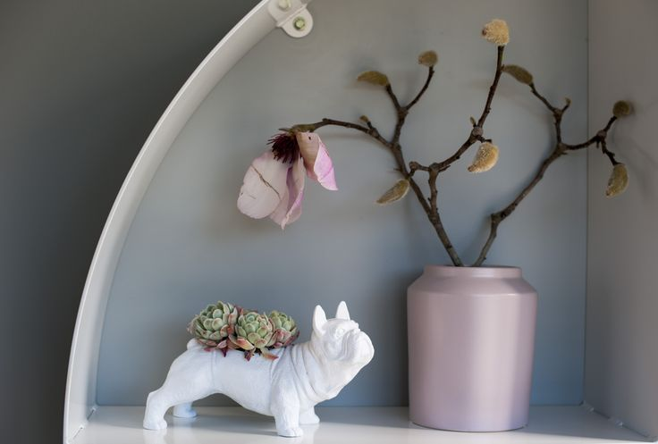 Magnolia has never looked better in this gorgeous pale pink ceramic vase and kept company by our white bull dog planter.  #www.kostore.co.nz #whitemoose #bulldog #plants #plantholder #newzealand