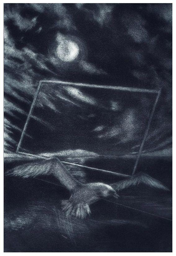 Il Gabbiano e la luna - Maniera nera su rame - Pasquale Scognamiglio