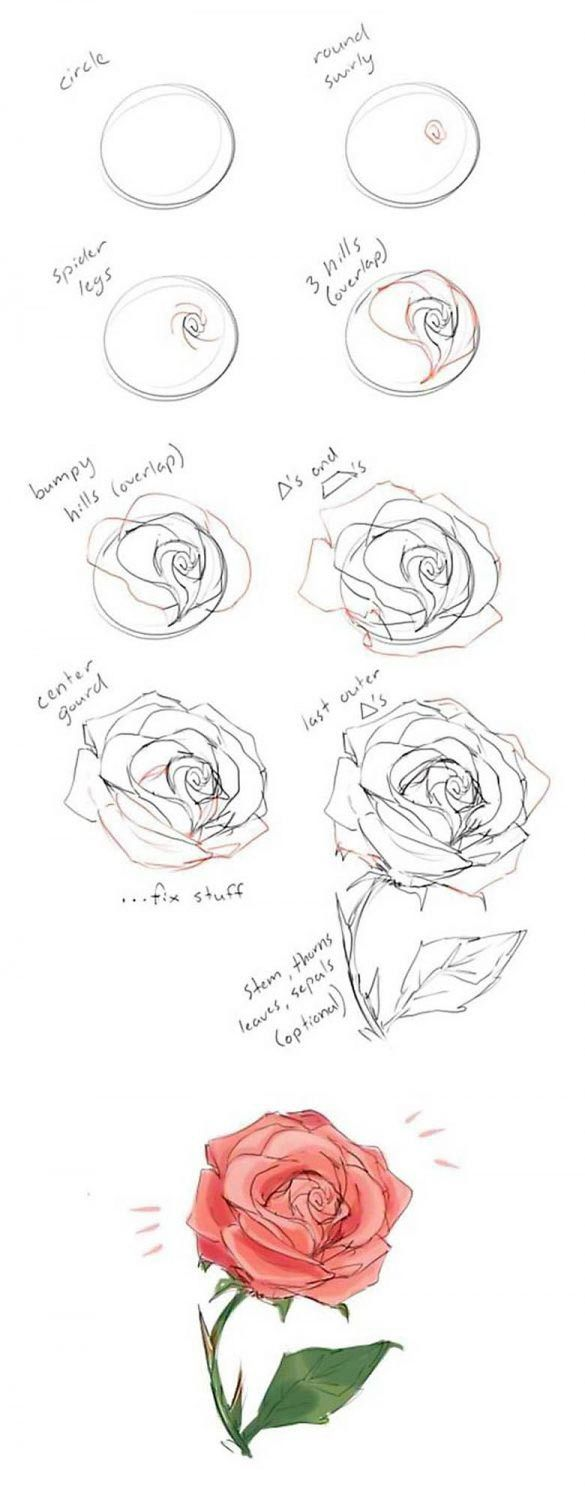 How to draw flowers and turn these drawings into really cool wall art – art