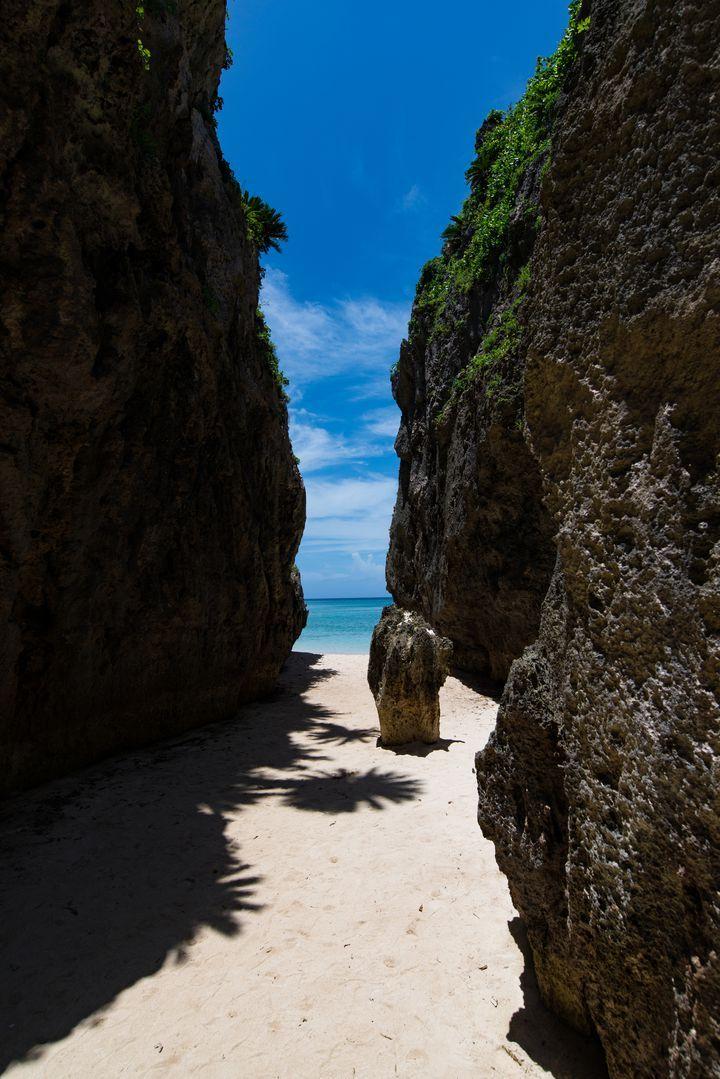 皆さんは、沖縄に「備瀬のワルミ」という知る人ぞ知る美しい秘境があることをご存知ですか?地図がなく事前に下調べをして行っても、なんと辿り着けない人が続出するという、まさに選ばれし者のみが行くことのできる場所なんだとか。