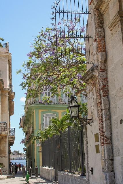 Havana antigua. Cuba.Plaza de Armas