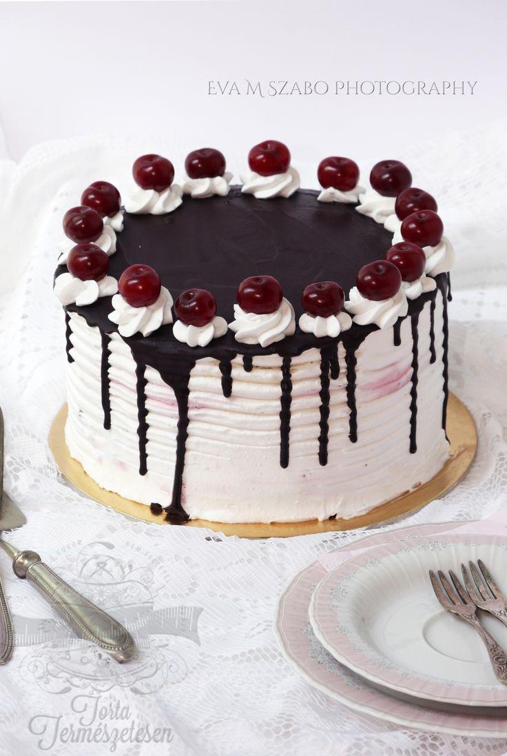 paleolit torta