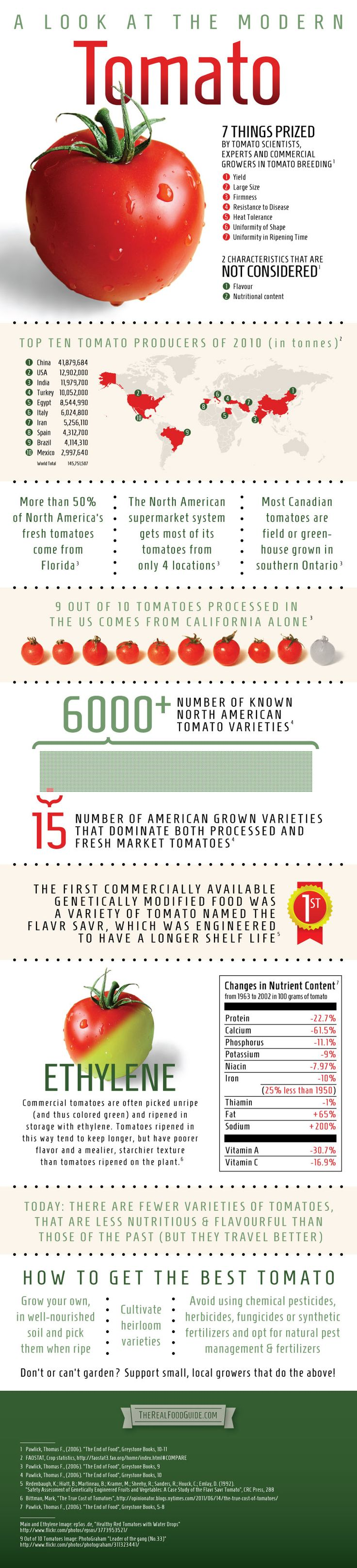 Infographic: A look at the modern tomato - The Real Food Guide