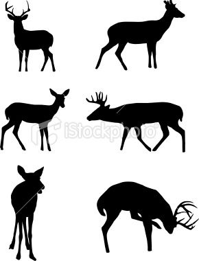 Deer Silhouettes Royalty Free Stock Vector Art Illustration
