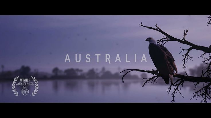 A journey across Australia from an eagle's eye. Featuring animals and landscapes from the deserts to the ocean, including The Kimberley, Arnhem Land, The Pilbara,…