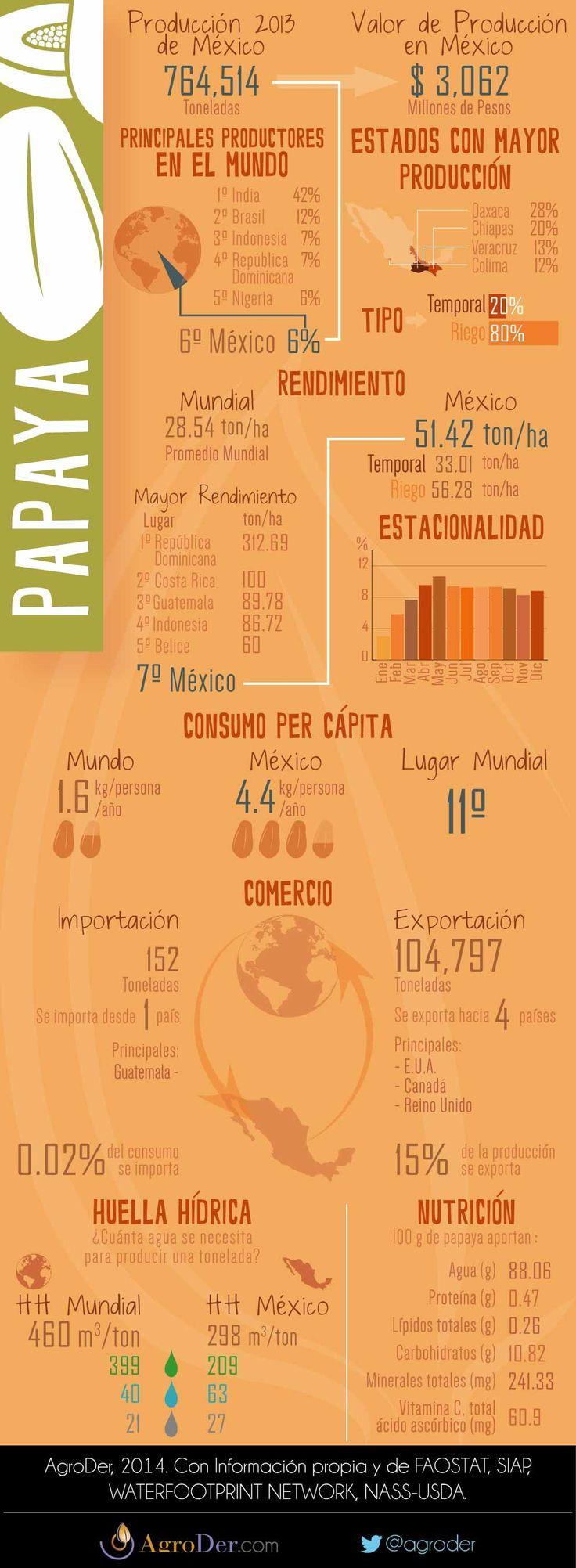 Infografía - Papaya en México, 2013.