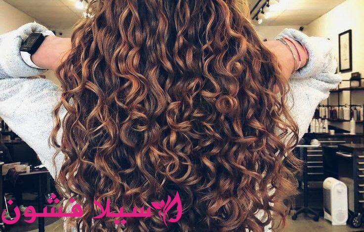 نصائح للعناية بالشعر الكيرلي سيلا فشون Hair Styles Beauty Hair