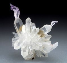 Starburst Reverse Scepter Quartz - Gogogoseb Mountains, Namibia