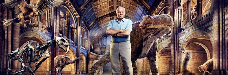 David Attenboroughs Natural History Museum Alive TV show