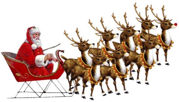 Connaissez le nom des rennes du Père Noël ?!!