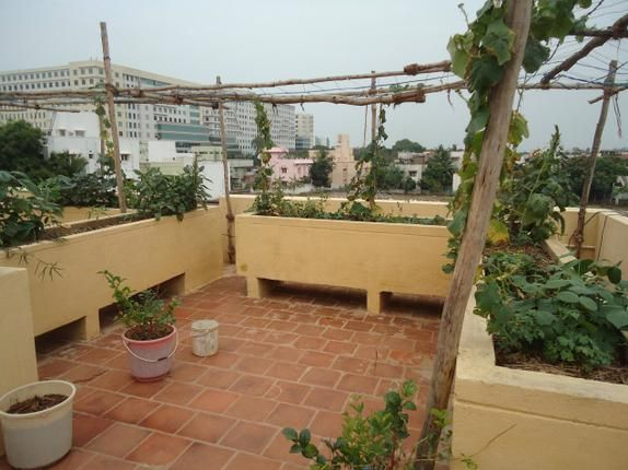 17 best images about rooftop garden india on pinterest for Terrace kitchen garden india