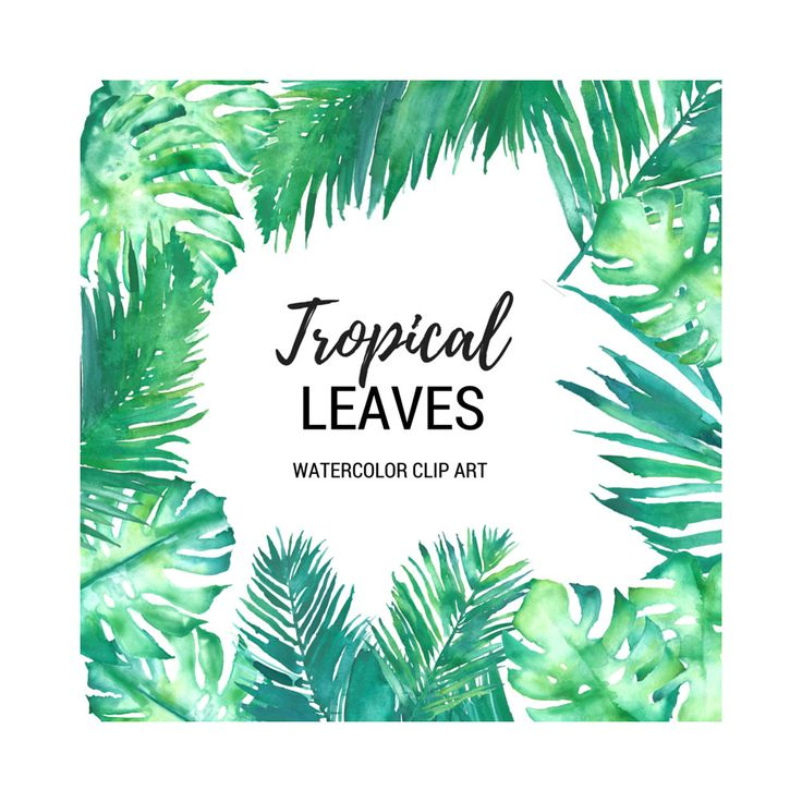 Tropical Leaves Watercolor Clip Art Digital Graphics 300dpi png Monstera Deliciosa Palm Palms Fronds Green Leaves Wedding Scrapbooking by theartcitizen on Etsy