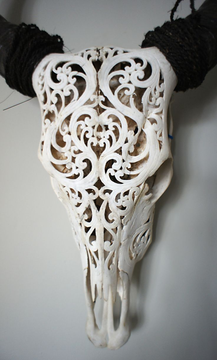 Best ideas about deer skull art on pinterest