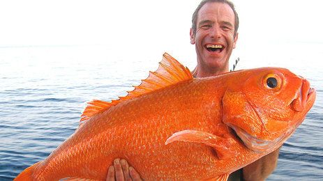 Google Image Result for http://wwwcdn.channel5.com/assets/images/000/010/769/large_size_Robson-and-Ruby-Snapper--laughing640x360.jpg%3F1304690720