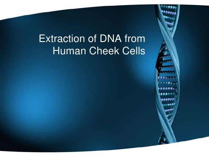 Extracting dna from cheek cell