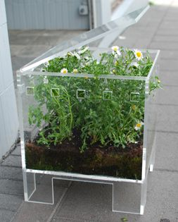 Dagny Bjarnadottir Furnibloom End Table: plexiglass furniture cleverly houses plants of all sorts—spices, vegetables or flowers—for easy cultivation and a unique set of tables and stools.