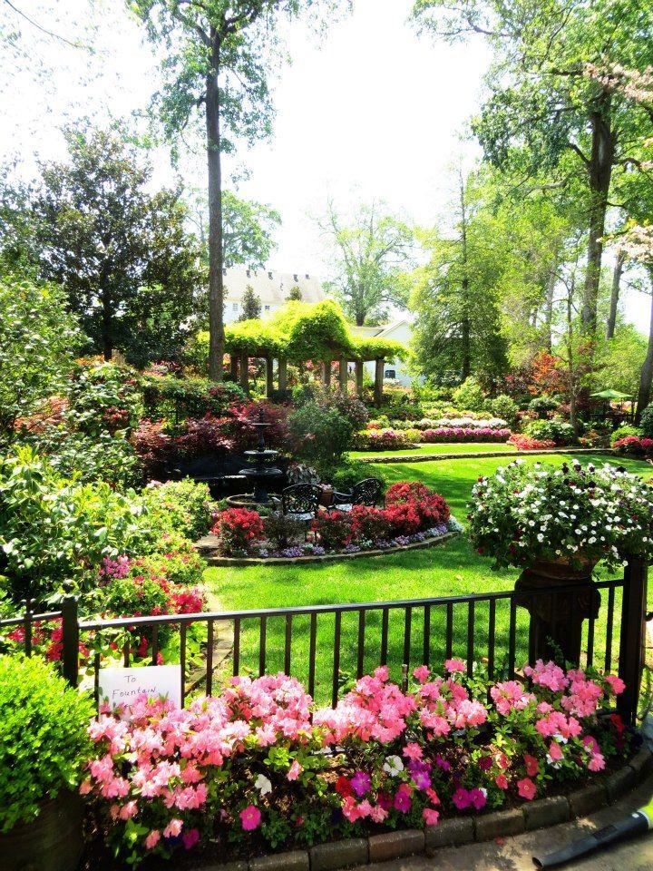 58 best Azaleas & Roses images on Pinterest | Tyler texas, Texas and ...
