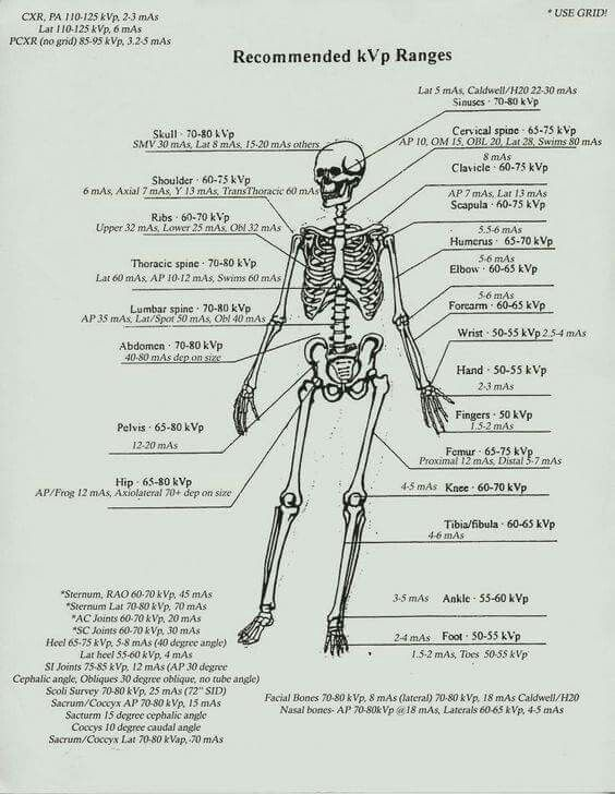 109 best Radiologic Tech images on Pinterest Rad tech, Anatomy - xray tech resume