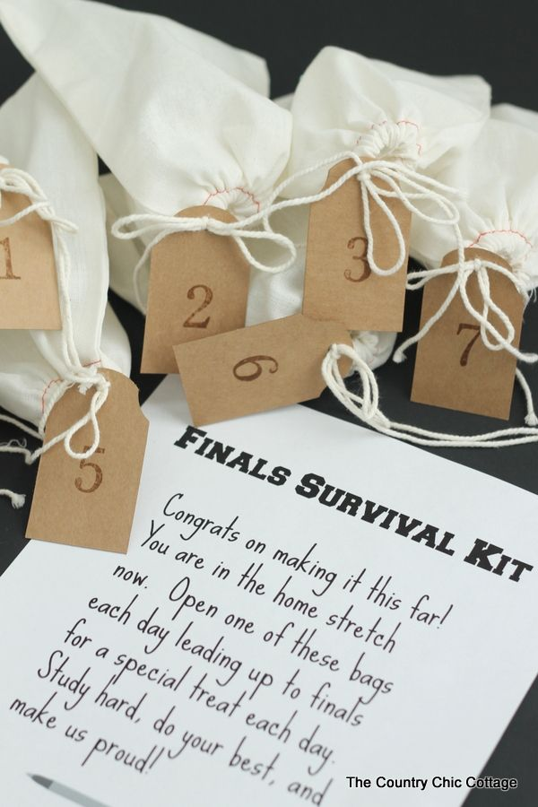 25 unique college boyfriend gifts ideas on pinterest boyfriend finals survival kit a college care package diy gifts college studentcollege negle Images