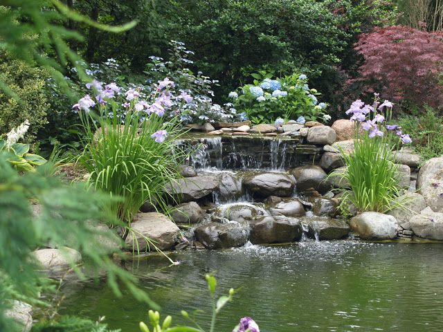 Captivating Find This Pin And More On 40 PHOTOS OF BEATIFUL GARDEN PONDS.
