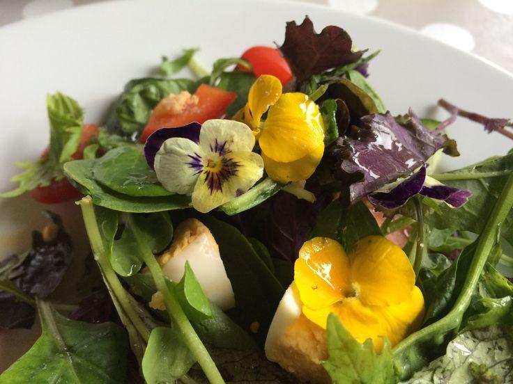 Bloemensalade | Fleurige salade met bloemen, vrolijk en zomers!