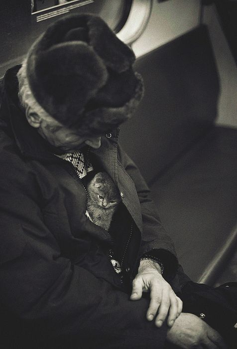 cat hidden in man's coat http://scrapbookofduke.posterous.com/lovely-photo-of-kitten-and-old-woman-on-train