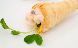 Finger food catering by the Small Food Caterers in Adelaide. The Small Food Caterers provide gourmet catering in Adelaide