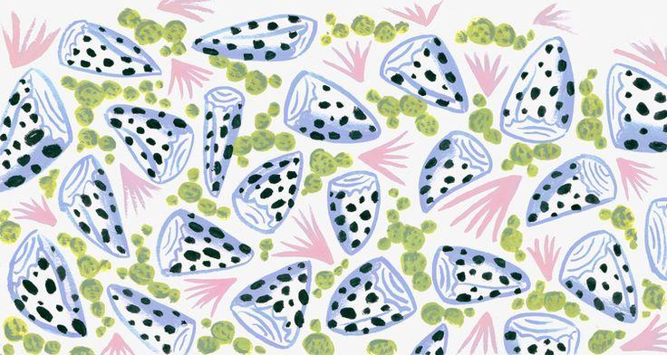 Sophie Oiseau shell pattern