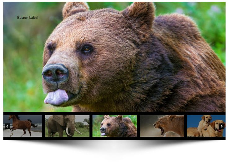 FreshSlider is a Responsive WordPress Touch Slider Plugin. You can create unlimited completely different  slideshows of images and videos (YouTube, Vimeo, HTML5), banner rotators.  Each slide in sl...