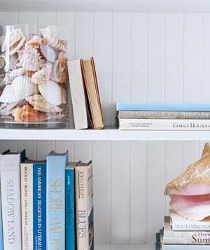 Shells in a vase on the bookshelves for spring/summer