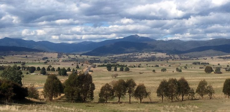The Delatite Valley with Mt Buller rising in the background