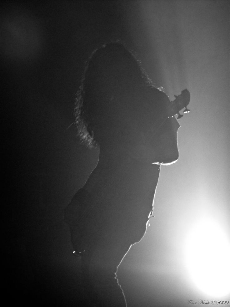 Mike Inez Silhouette