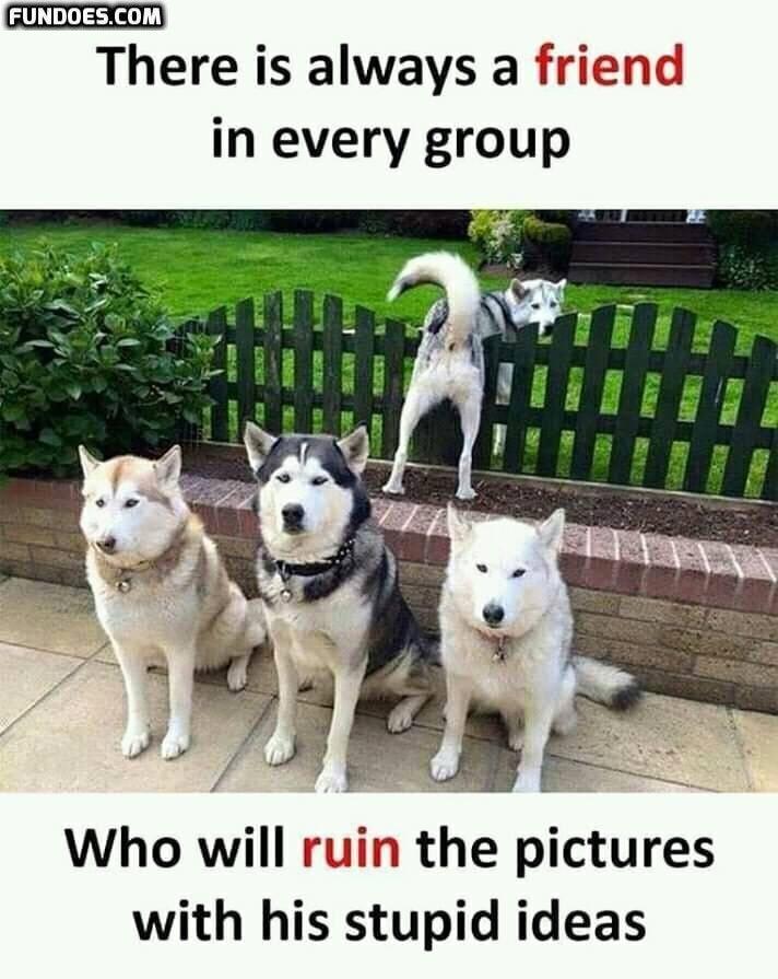 January 2020 In A Nutshell History Memes Funny Memes Memes