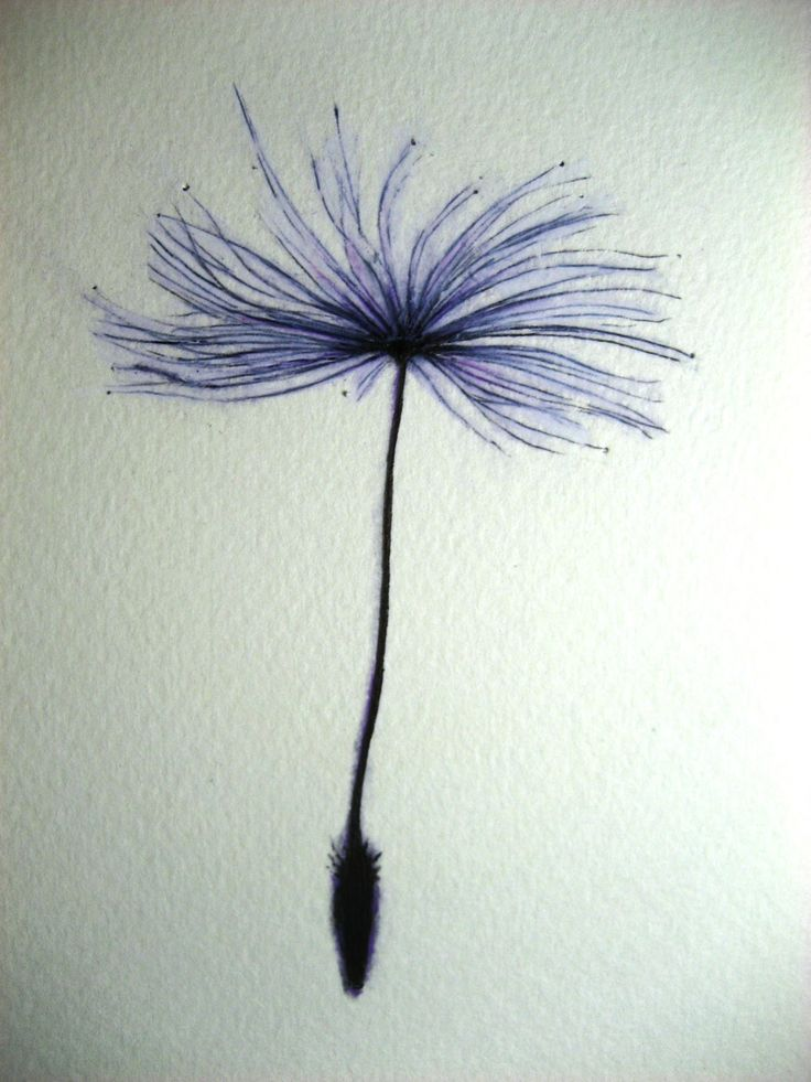 A Drawing a Day for a Year: February 1, 2011 - Dandelion Seed