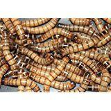 Amazon.com : MBTP Bulk Dried Mealworms - Treats for Chickens & Wild Birds (5 Lbs) : Patio, Lawn & Garden