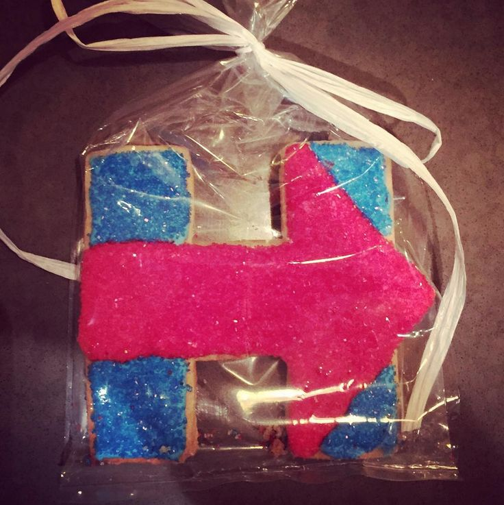 Serve up a batch of homemade Hillary 2016 cookies. Grab the official H cookie cutter at the Hillary for America shop (click this pin to buy now). Photo via loiteringwithloyd on Instagram