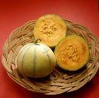 Melons (culture) | Maisonbrico.com