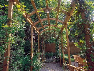 Frame Your Walkway: Build a Pergola