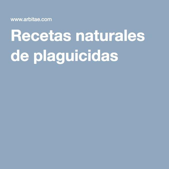 Recetas naturales de plaguicidas