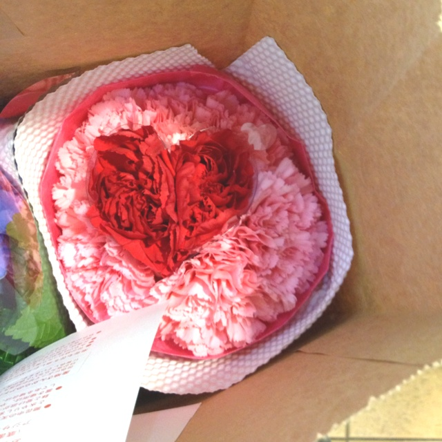 Heart carnation